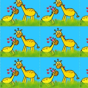 Baby Giraffe love