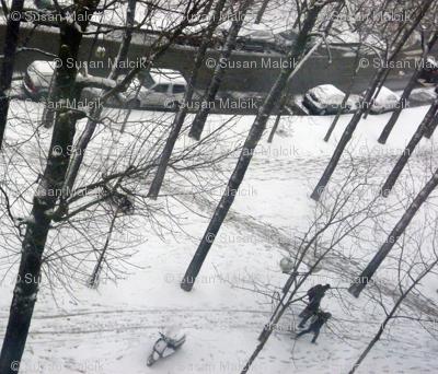 Last Snow of the Season, Paris 2013, variation 2a