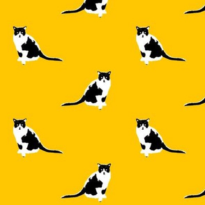 Squeak Cat Fabric