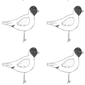 seagull_sketch__2_