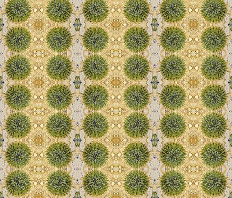 Cactus fabric by kaypea on Spoonflower - custom fabric