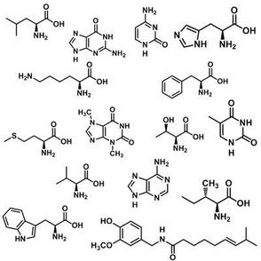Molecules!