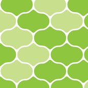 Rrspring_wire_lime_shop_thumb