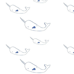 narwhal family