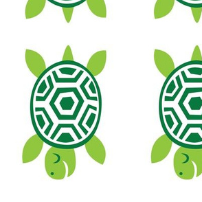 greenbubz turtle