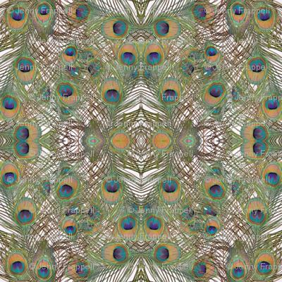 A kaleidoscope of peacock feathers ©Indigodaze2013