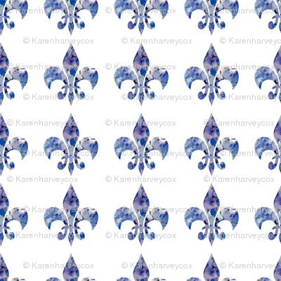 Hydrangea fleur di lis