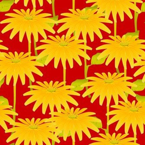 Yellow Flower on Red