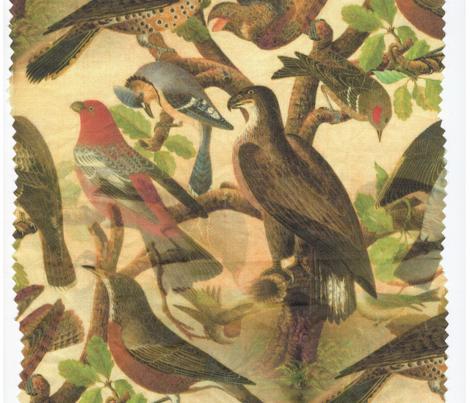 Farmhouse Birds Art
