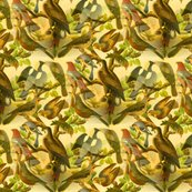 Birds_national_art_gallery_19th_century_made_seamless_and_color_perfected_shop_thumb