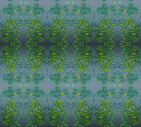 IMG_4180-3 fabric by leho on Spoonflower - custom fabric
