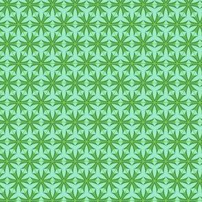 Dart Star 6 Net