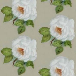 Grandmother's rose