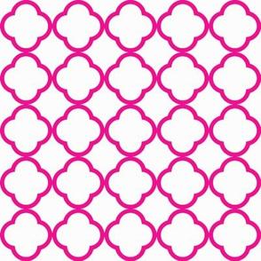 Raspberry Basic