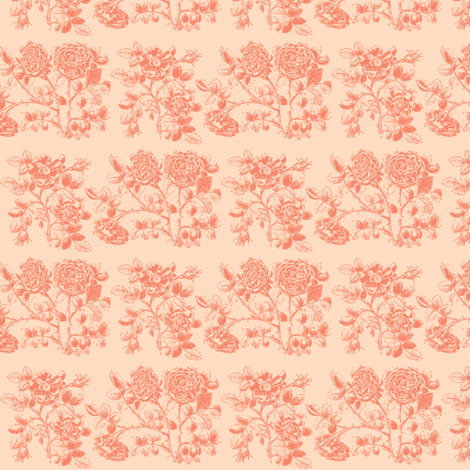Coral Roses fabric by amyvail on Spoonflower - custom fabric