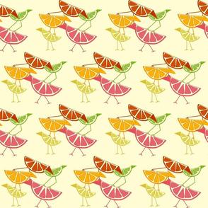 Citrus Birds!