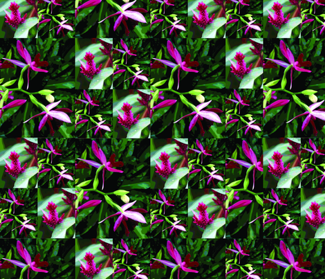 Orchid_Quilt fabric by adelagrace on Spoonflower - custom fabric