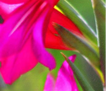 Red_Corner fabric by adelagrace on Spoonflower - custom fabric