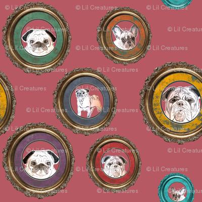 pug, french bulldog, english bulldog