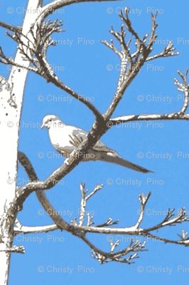 Snow Bird in March