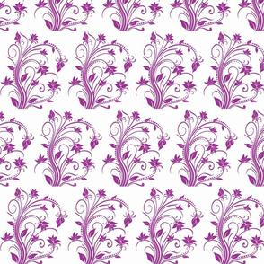 violet flwr
