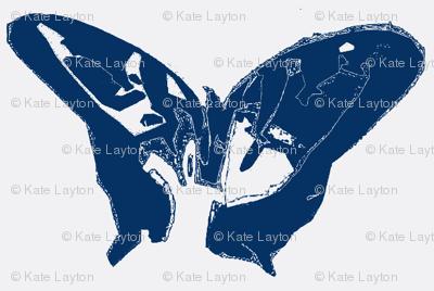 Butterfly, blue
