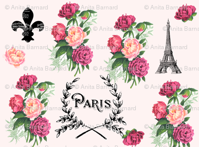 Paris Roses on Pink