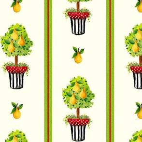Pear Topiary