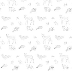 baby-animals234