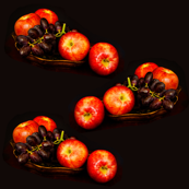 apples_and_grapes