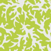 Rrcoralreefprint_lime.ai_shop_thumb