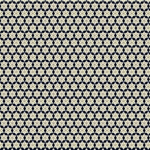 Snowflake Star Pattern 1863