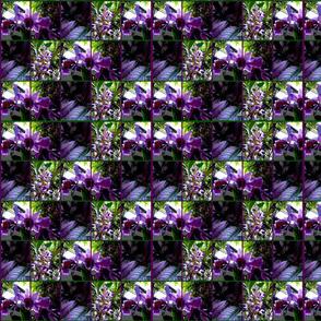 PurpleFloralFabric