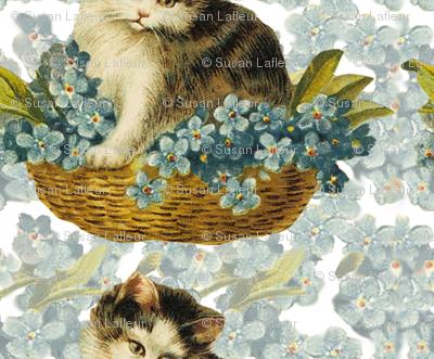 Cat_in_Basket