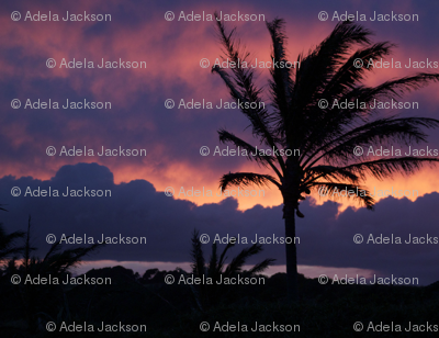 Hawaii_Sunset3