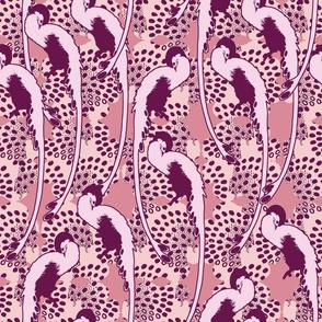 Siesta Pink