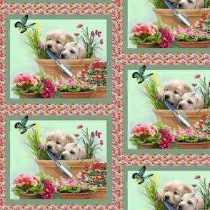 garden_helpers