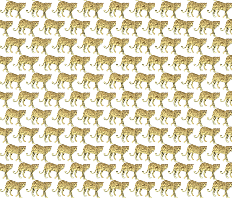 Leopard fabric by terriaw on Spoonflower - custom fabric