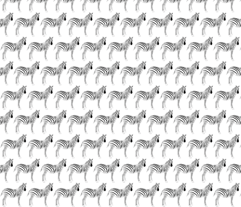 Zebra fabric by terriaw on Spoonflower - custom fabric