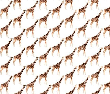 Rmobile-giraffe-reflected_shop_preview