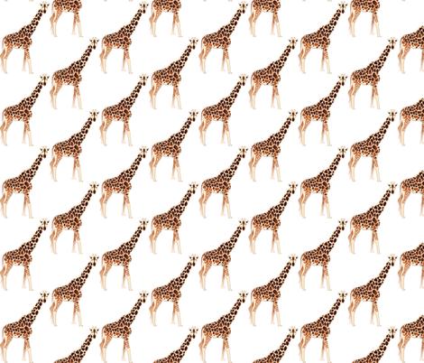 Giraffe fabric by terriaw on Spoonflower - custom fabric