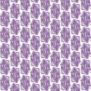 Coral Purple