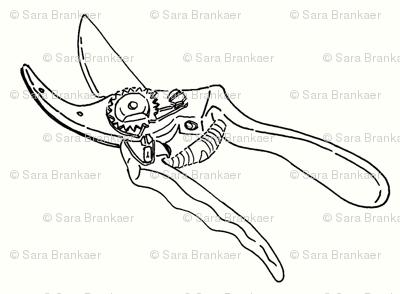 secateurs sketch