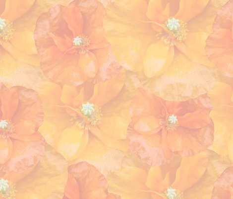 Muted_orange_poppy_seamless_shop_preview