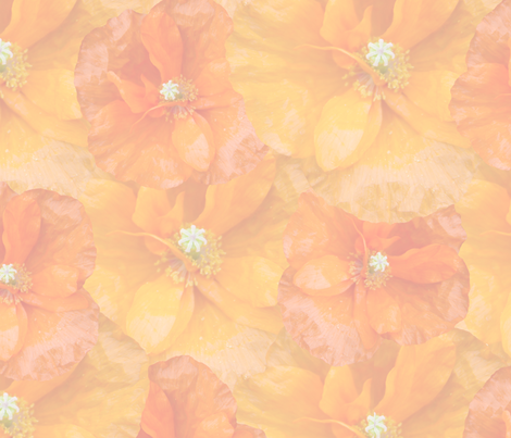 muted_orange_poppy_seamless fabric by bluewrendesigns on Spoonflower - custom fabric