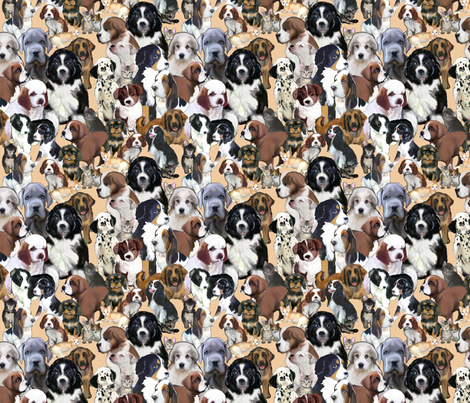 puppies_and_kittens_three fabric by dogdaze_ on Spoonflower - custom fabric
