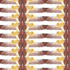 birdstripe2