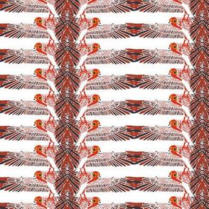 birdstripe1