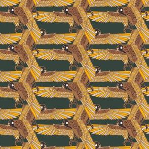 birdfill2
