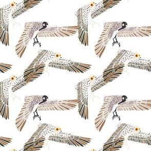 birdchintz1